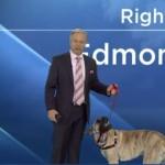 perro tomó el control del informe del clima