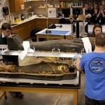 sarcófago de una momia egipcia