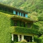 pueblo verde de China