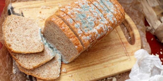 Quitar la parte con moho de un alimento y comer el resto ¿Es realmente un riesgo para la salud?
